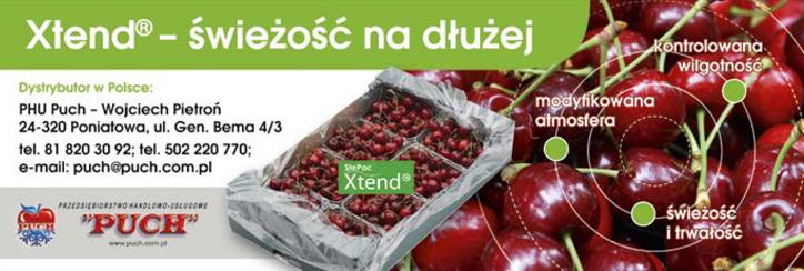 borówka wysoka, przechowywanie borówki, modyfikowana atmosfera, jagodnik.pl, Xtend