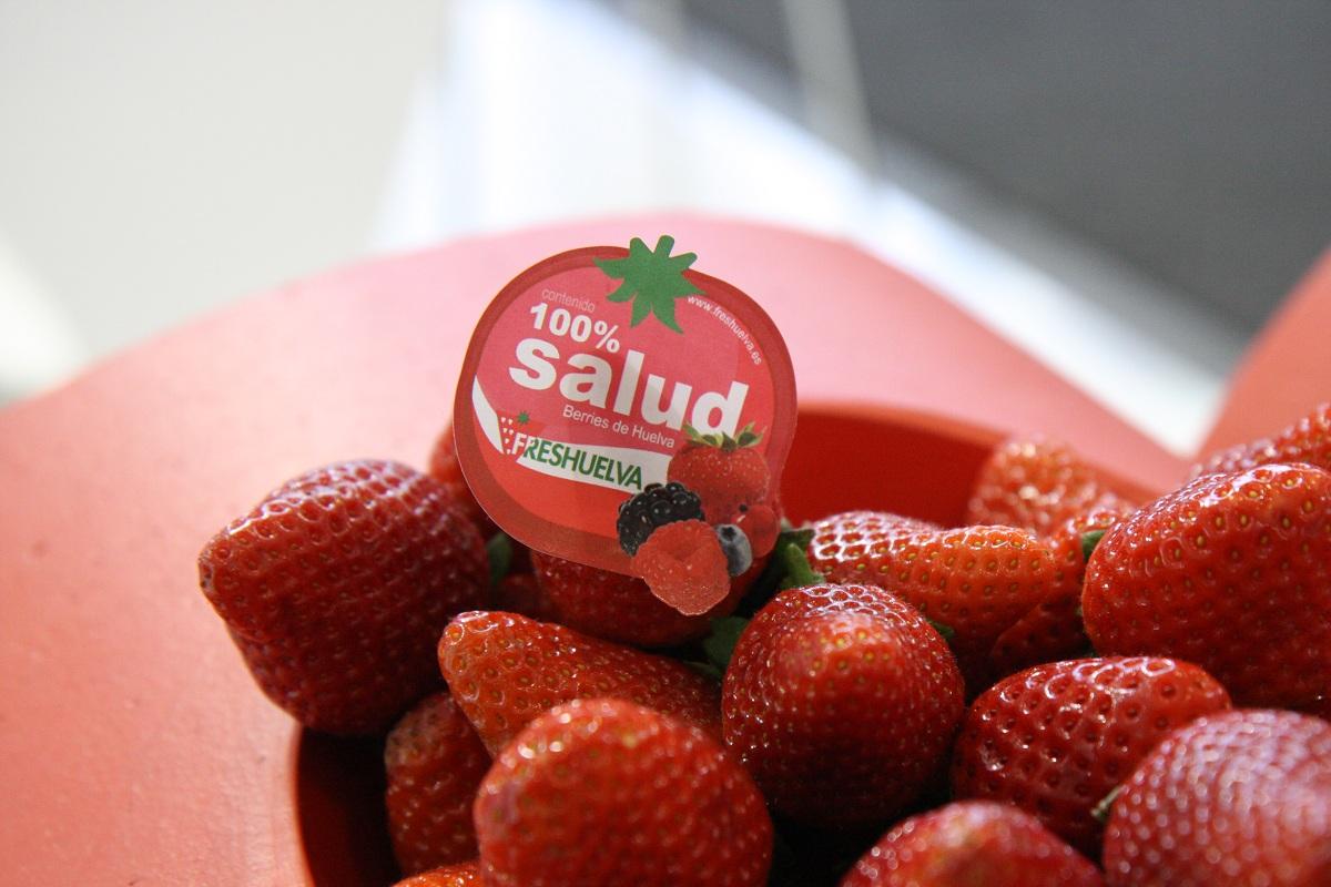 freshuelva, huelva, strawberry from huelva, jagodnik.pl