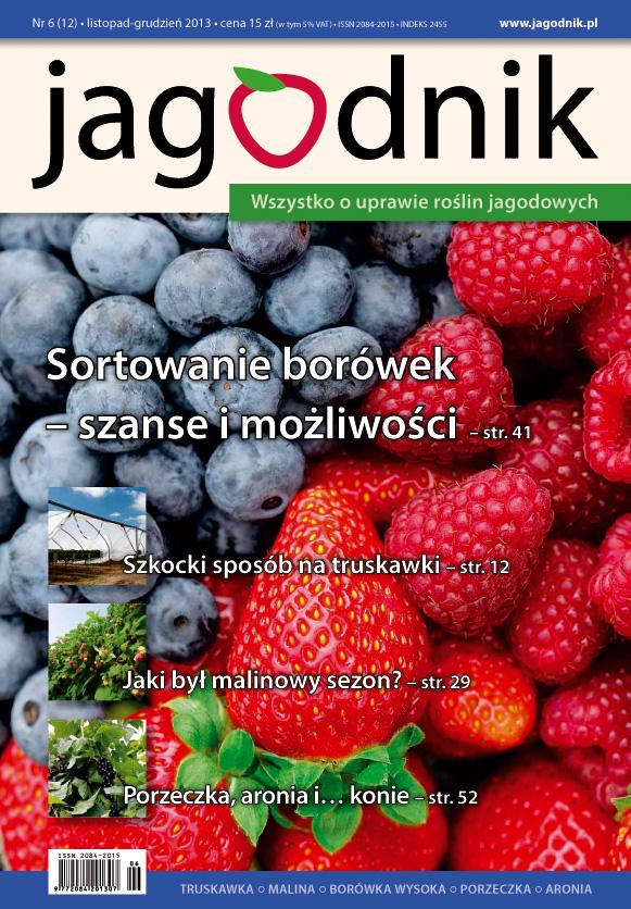 jagodnik, uprawa truskawek, uprawa malin, uprawa porzeczek, borówka wysoka