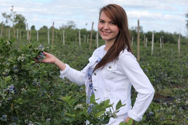 aktualności, Polska, borówka wysoka, eksport borówki, Agro Trade