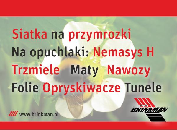 brinkman_truskawkowy_art.px