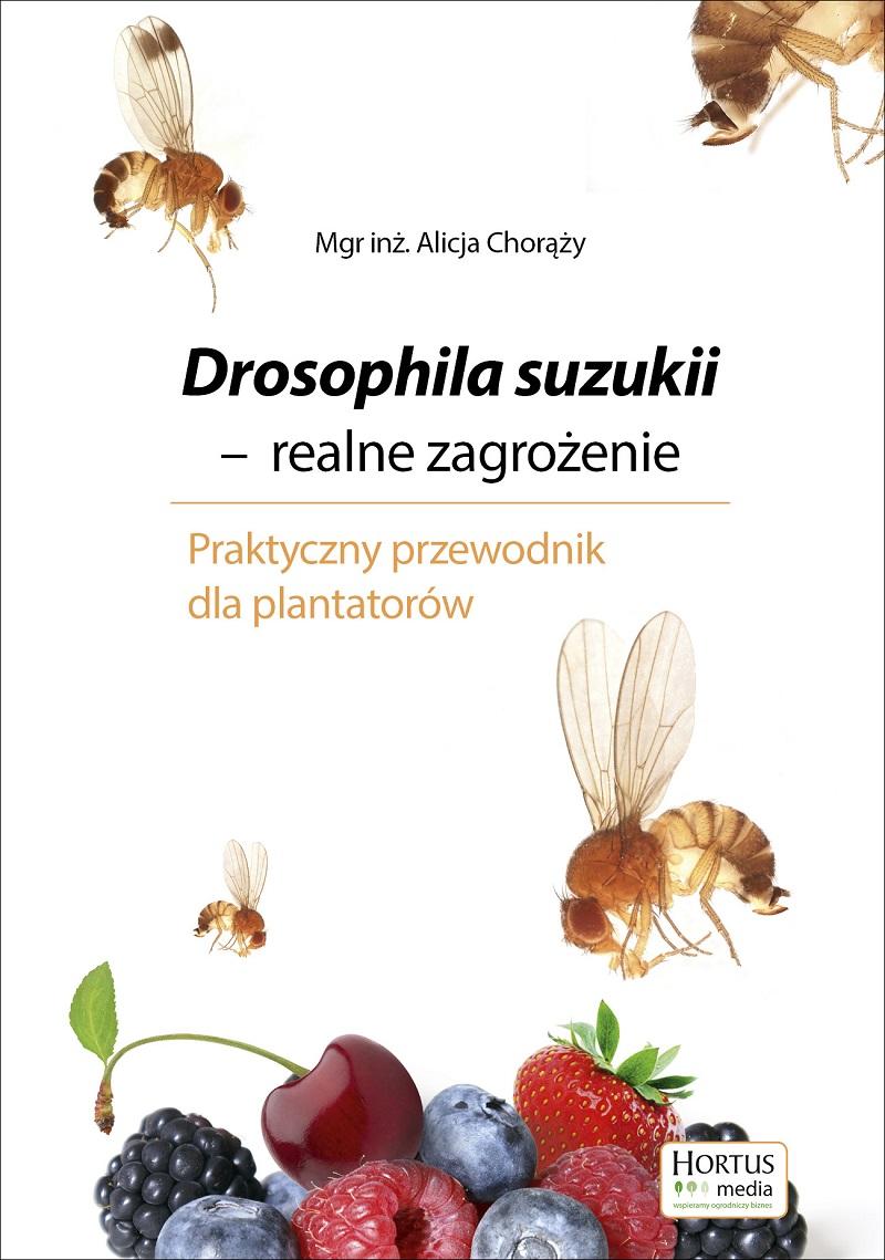 Drosophila suzukii, muszka plamoskrzydła