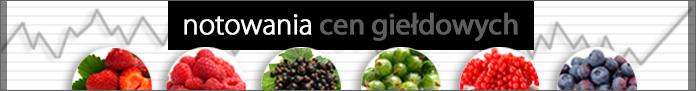 Gielda_1