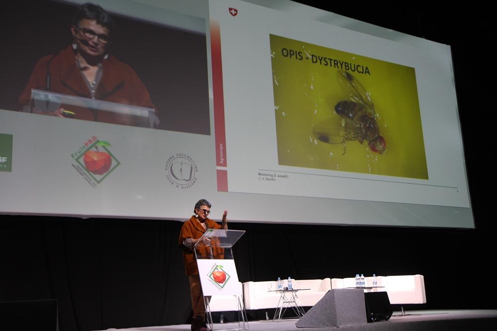 Catherine Baroffio, reprezentująca Agroscope, mówiła o szwajcarskich doświadczeniach w walce z Drosophila suzukii