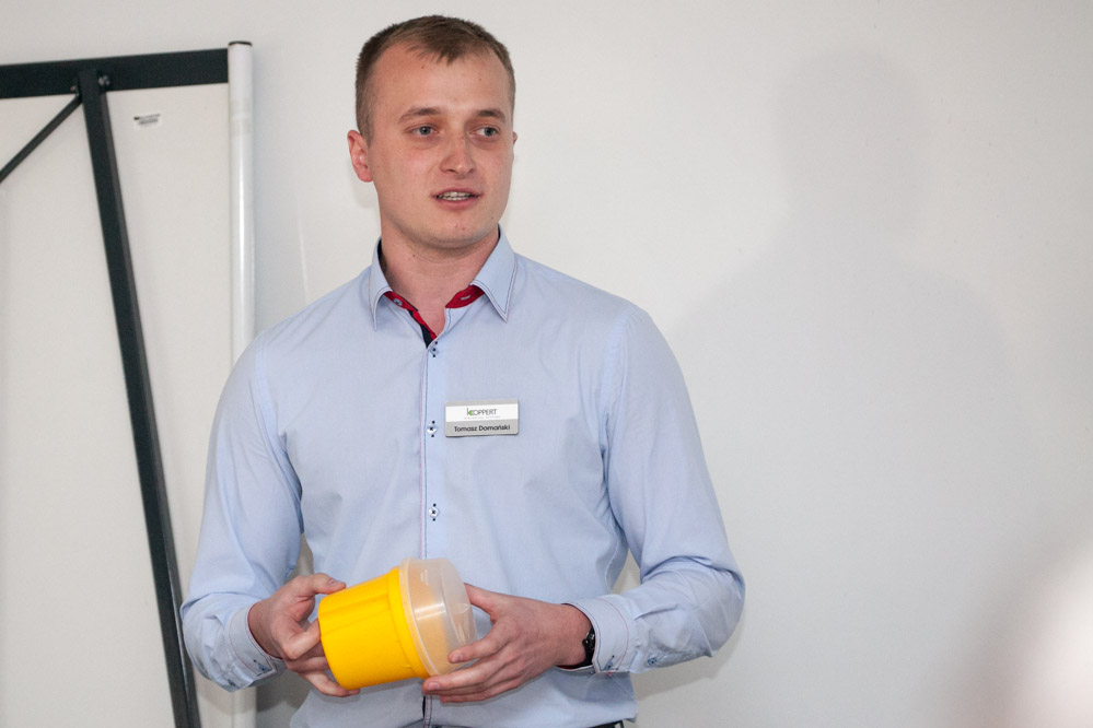 Tomasz Domański, Koppert