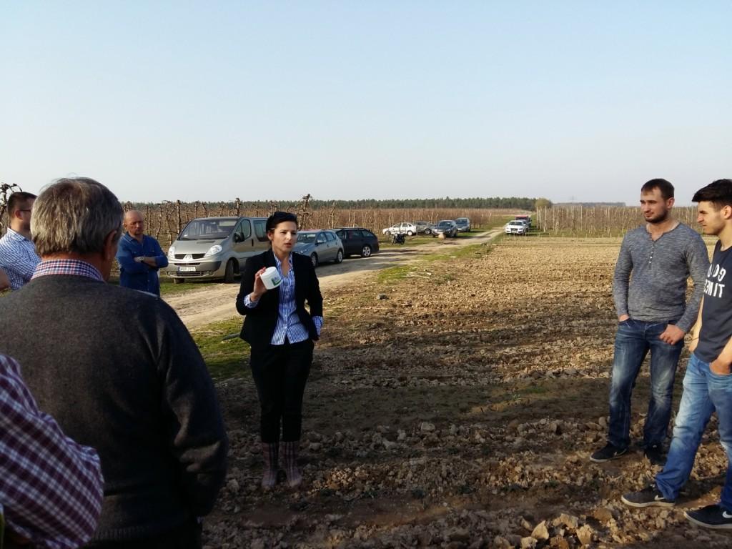 Agnieszka Ptaszek z firmy F&N Agro omówiła ona zalety nowego fungicydu zwalczającego szarą pleśni w truskawce o nazwie Prolectus 50 WG