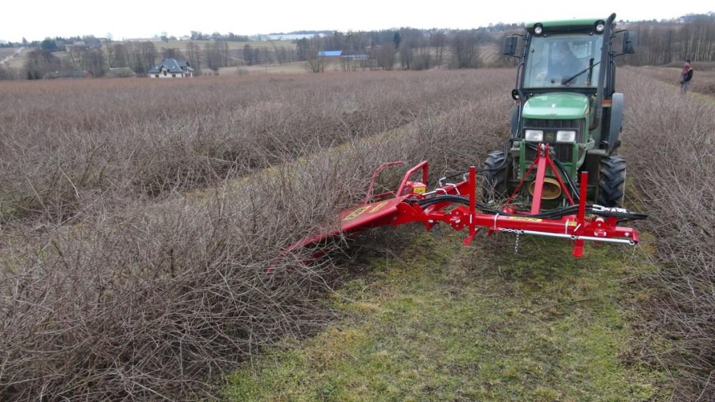 Wycinacz pędów ROCH w agreście