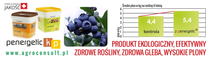 Agroconsult700x200maj