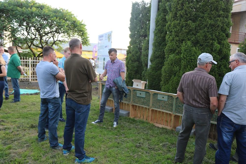Dr Dariusz Teper odpowiada a pytania hodowców murarki ogrodowej