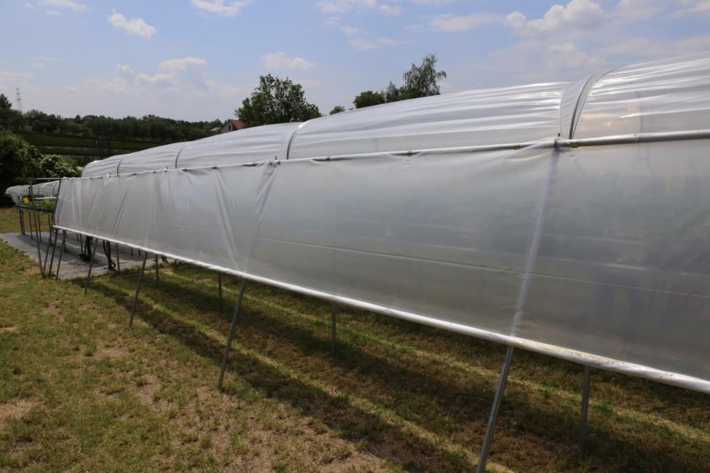 Kurtyny boczne mają uszczelnić konstrukcję i pozwolić na wcześniejsze rozpoczęcie uprawy