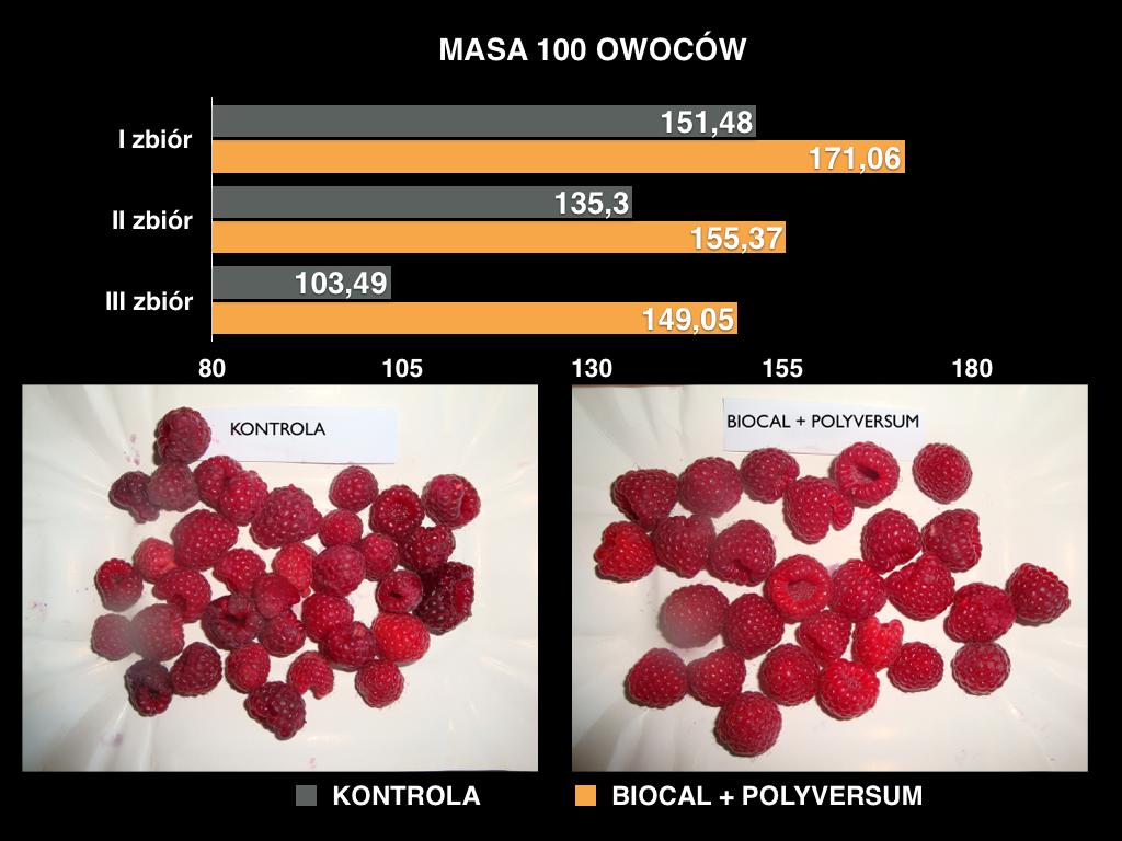 polyversum
