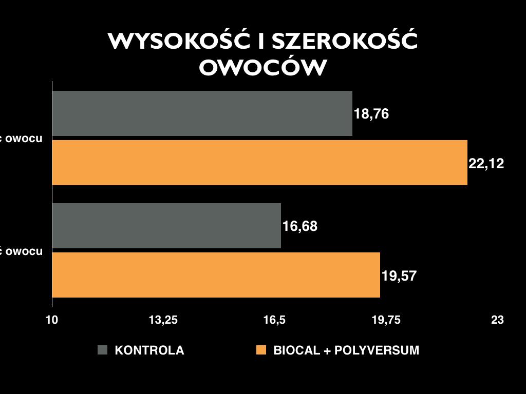polyversum_2