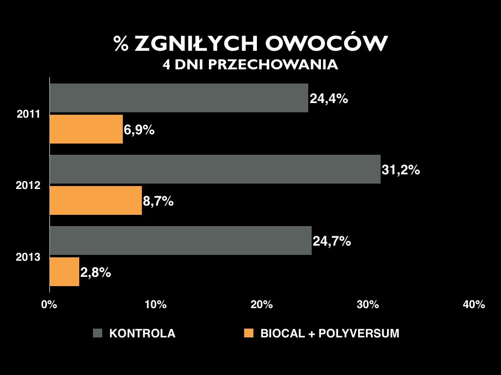 polyversum_3