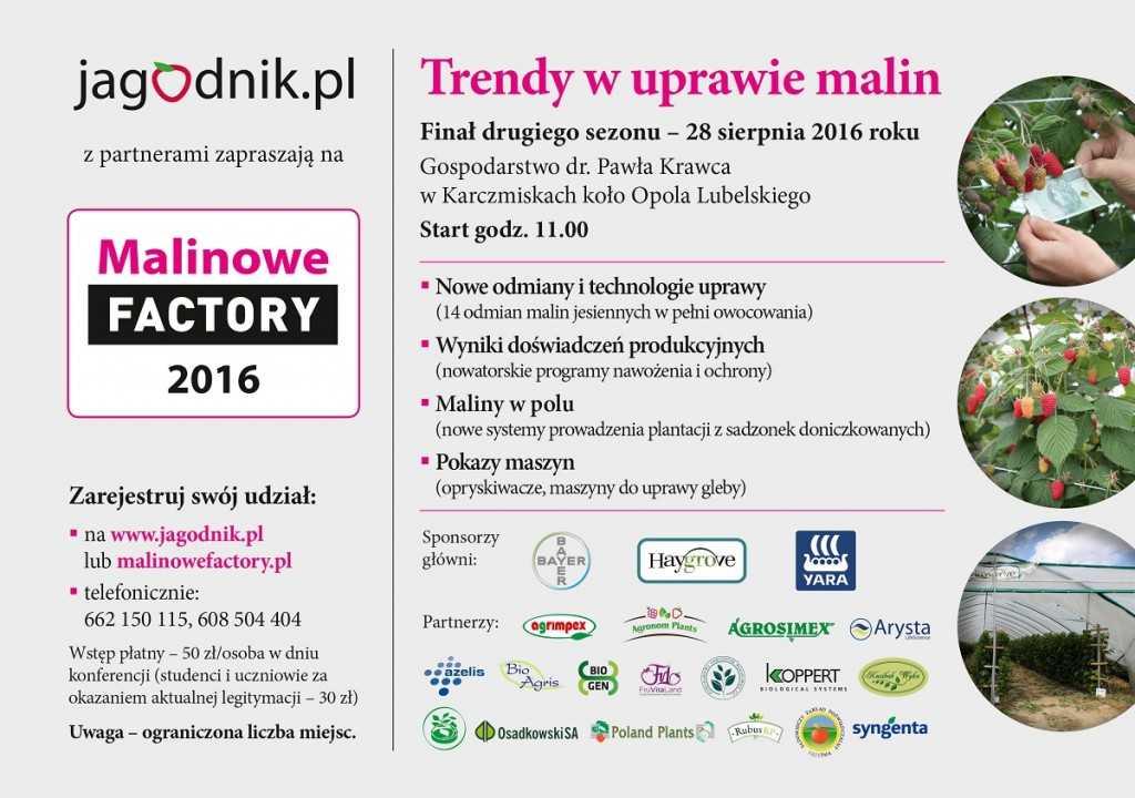 Malinowe_Factory_2016