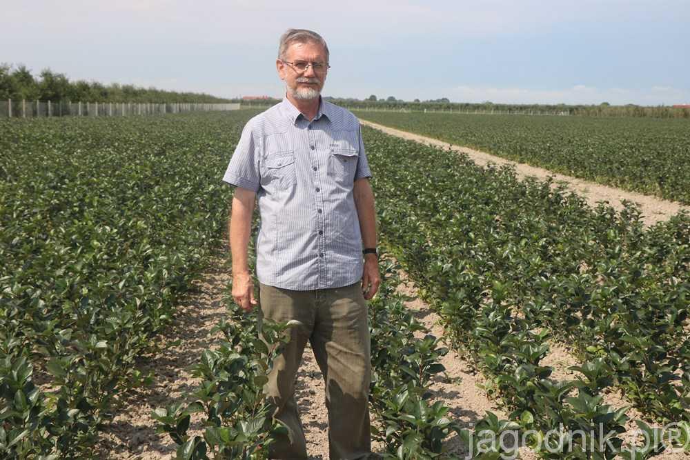 Piotr Eggert od 40 lat specjalizuje się w rozmnażaniu aronii