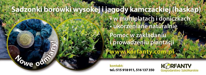 Korfanty_reklama_09-2016