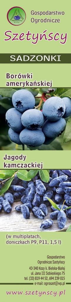 Szetynscy_70x295