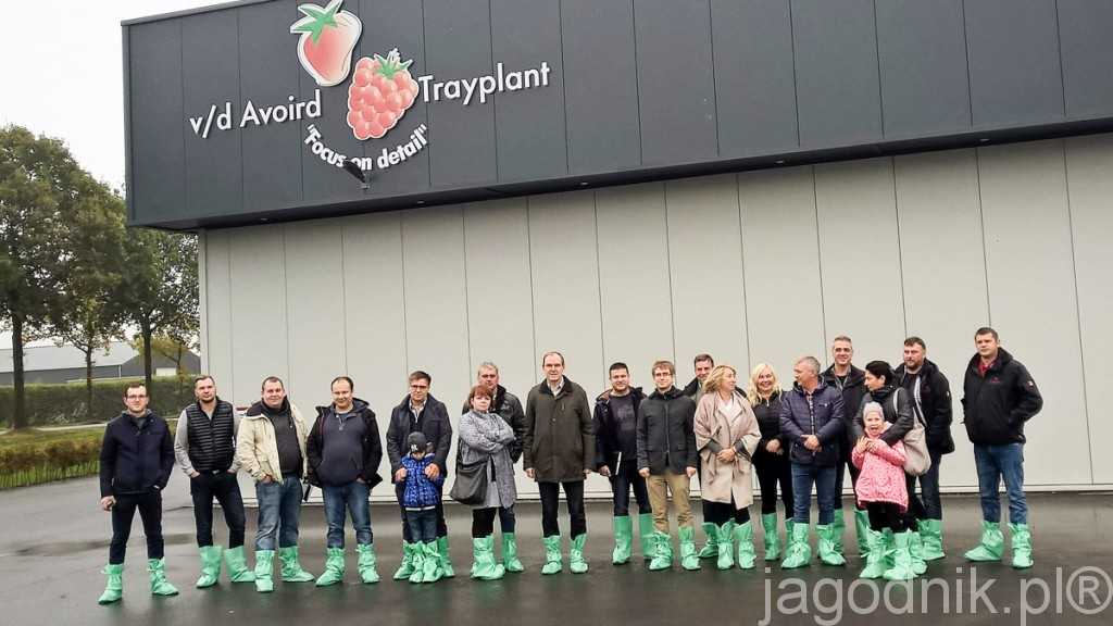Polska grupa w szkółce Trayplant v/d Avoird