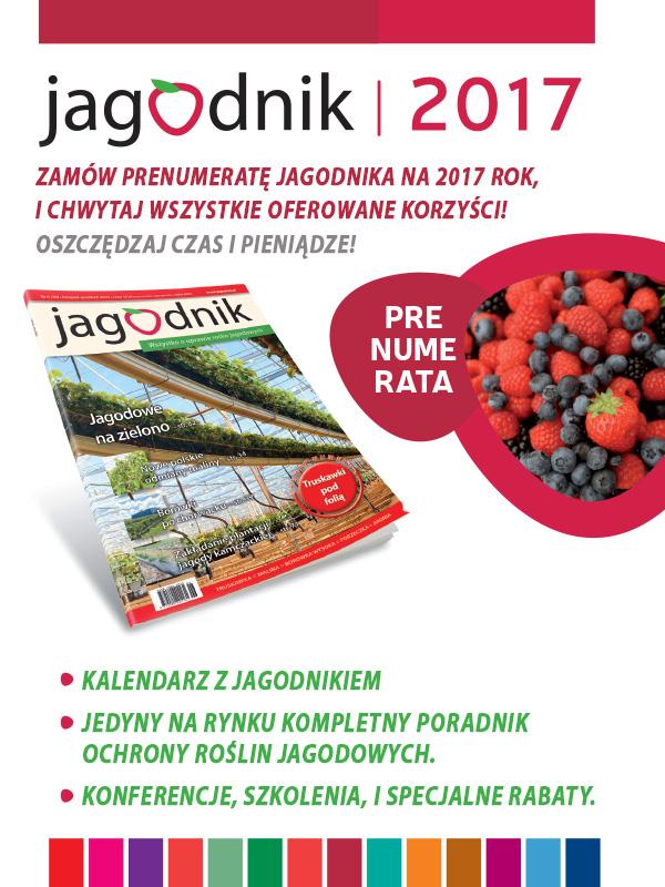 Jagodnik_popup_600x800_v1